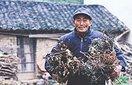 76岁裴光旭铁汉柔情的大爱剪影(5图)