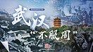"""《国家相册》特别节目:武汉""""不服周""""(视频)"""
